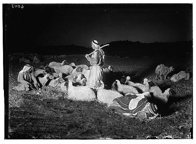 Agriculture, etc. Shepherd scenes. 'While shepherds watched t...