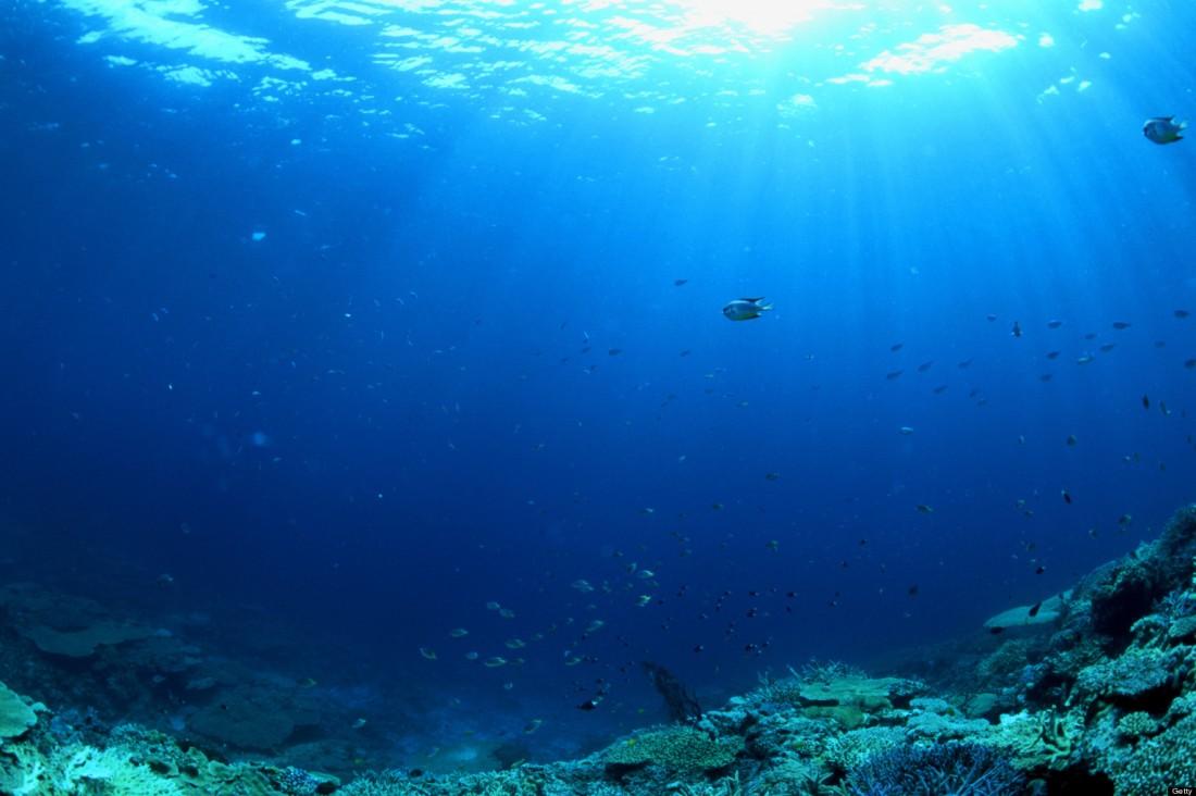 o-world-oceans-day-2013-facebook