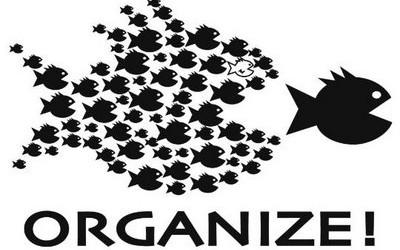 organize-fish-400x250