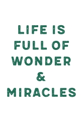 Life is Full of Wonder and Miracles