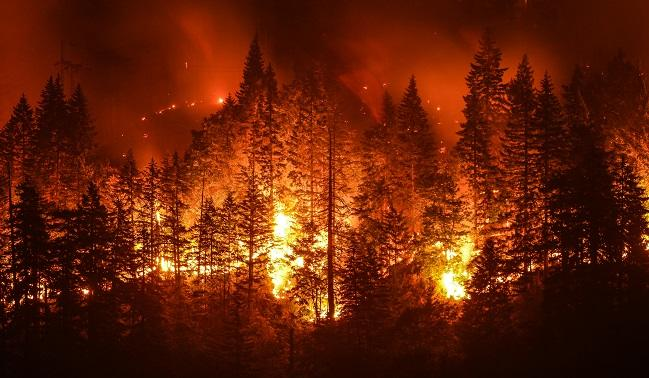4.12.18 Particulate Matter From California Wildfires Linked to Cardiovascular and Cerebrovascular Events